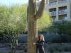 Phoenix Arizona 1